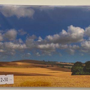 Art Card -Golden fields