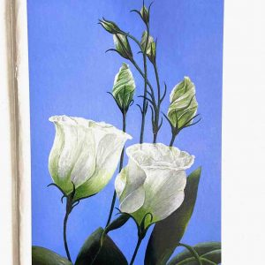 Art Card – White Flowers