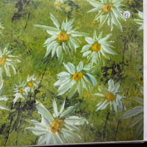 Art Card – Daisies Green Flowers 1 (PP)