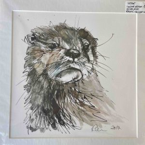 Mounted Prints – Otter (limited edition gilcee)