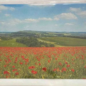 Art Card – Poppies On Bury Hill