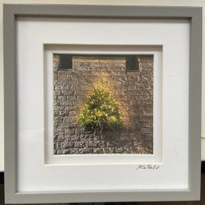 Framed Photography – Arundel Christmas