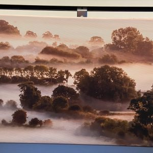 Photographs On Canvas – Misty Trees (panoramic)