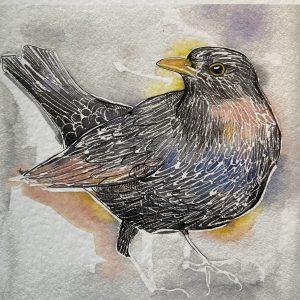 Art Card – Bird (black)