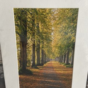 Mounted Prints – Arundel (Mill Lane)