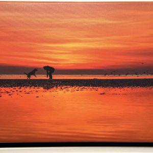 Photographs On Canvas – Sunset Dog Walker (panoramic)