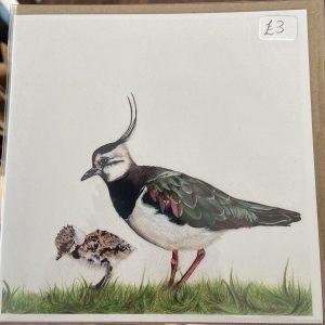 Art Card – Bird (ES)