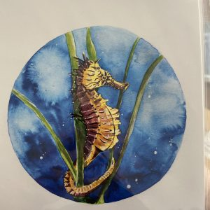 Print – Seahorse (Limited Edition)