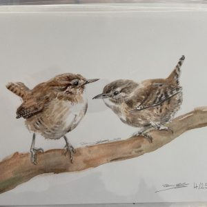 Print – Wren (Limited Edition)