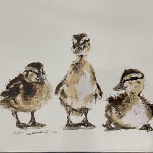 Print – Ducklings (Limited Edition)