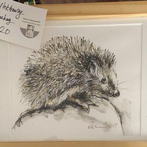 Original Paintings – Hedgehog (original ink drawing)