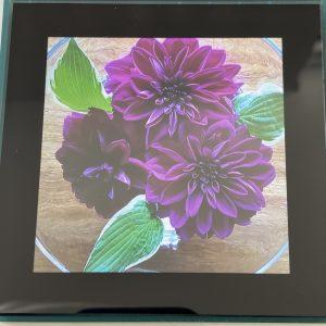 Coasters – Flowers (dark purple)